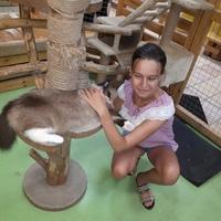 Елена, 21 год, Весы, Нижний Новгород