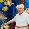 Зиновий, 76, г.Тель-Авив-Яффа