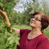 Александра, 31 год, Водолей, Бишкек