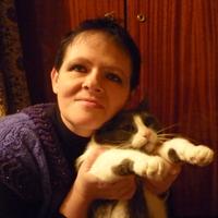 лена, 48 лет, Телец, Москва
