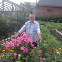 Александр, 76 лет, Телец, Томск