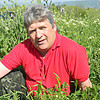 Владимир, 63, г.Минск