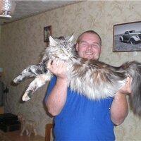 Илья, 42 года, Телец, Лобня
