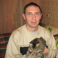Марат, 36 лет, Рыбы, Ульяновск