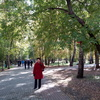 ЕЛЕНА, 52, г.Улан-Удэ