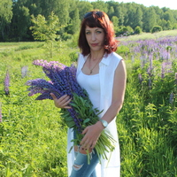 Ольга, 38 лет, Скорпион, Сухиничи