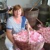 PATRIZIA, 61, г.Bellaria-Igea Marina