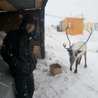 Александр, 29 лет, Козерог, Самара