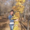 Нина, 34, г.Астана