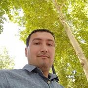 Shavkat 36 Ташкент