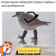Владимир 40 Москва