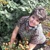 Галина Антонова (Яков, 57, г.Акколь
