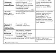 Natali 33 Москва