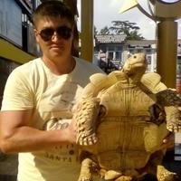 Дмитрий, 40 лет, Скорпион, Новосибирск