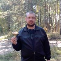 Сергей, 40 лет, Лев, Кузнецк