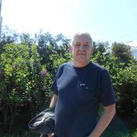 григорий, 69 лет, Дева, Мытищи