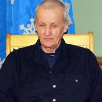 Николай, 70 лет, Телец, Киров