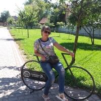 Татьяна, 52 года, Козерог, Кропивницкий