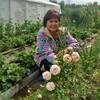 татьяна, 54, г.Североуральск