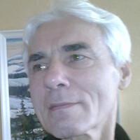 геннадий гайворонский, 76 лет, Козерог, Нижний Новгород