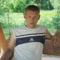 виталий, 37 лет, Лев, Миргород