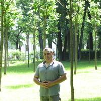 Максим, 35 лет, Дева, Москва