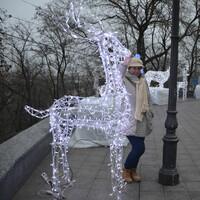 Настя, 30 лет, Стрелец, Воронеж