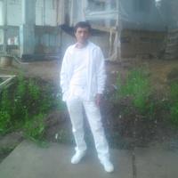Кодер, 52 года, Близнецы, Москва
