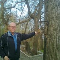 vladislav, 48 лет, Овен, Тольятти