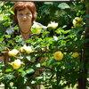 валентина, 66, г.Акимовка