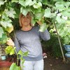 Наталья, 51, г.Молодечно