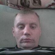 макс 33 Кострома