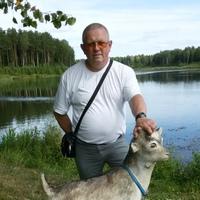 Сергей, 53 года, Близнецы, Волхов