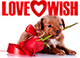 LoveWish - помощь одиноким душам.