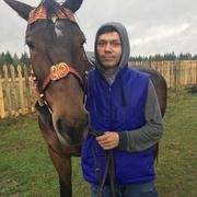 dimasik 31 Новосибирск