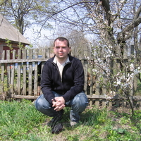 Alex, 39 лет, Телец, Томск