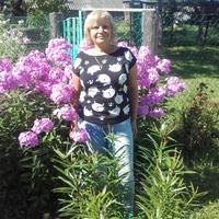 Лариса, 56 лет, Телец, Санкт-Петербург