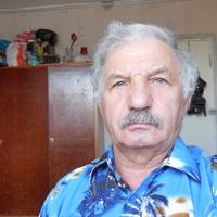 Анатолий, 81 год, Лев, Москва