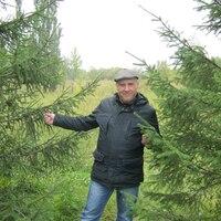 ANDREY KHLESTOV, 52 года, Водолей, Омск