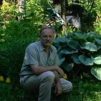 Владимир, 69 лет, Рак, Евпатория