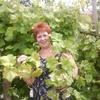 Жанна, 57, г.Николаев