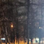 Евгений Богомазов 51 Москва