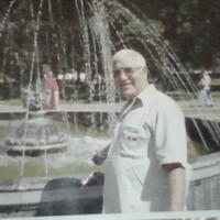 Анатолий, 73 года, Лев, Самара