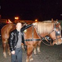 Максим, 35 лет, Лев, Тула