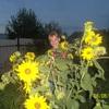 Ольга, 33, г.Варна