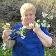 ирина новик 60 Советск (Калининградская обл.)