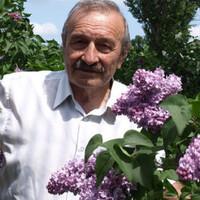 Геннадий Дьячук, 76 лет, Дева, Мончегорск
