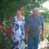 Анатолий, 62, г.Тараща