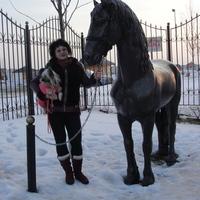 АЛЛА, 42 года, Стрелец, Москва