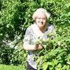 Людмила, 70, г.Великий Новгород (Новгород)